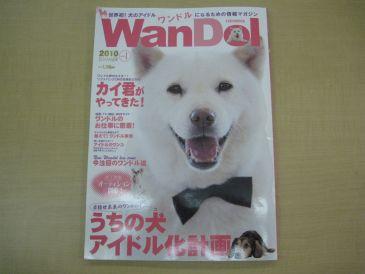 Wandol