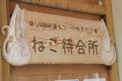 Ogasawara_6